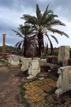 vignette libye_archeo_013.jpg